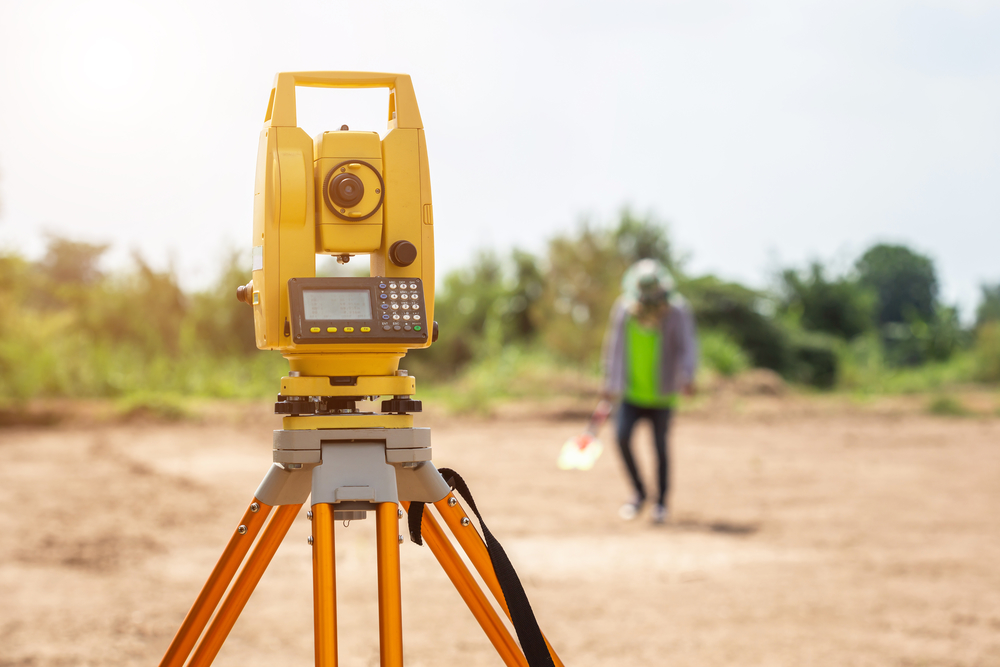 Surveyors career options